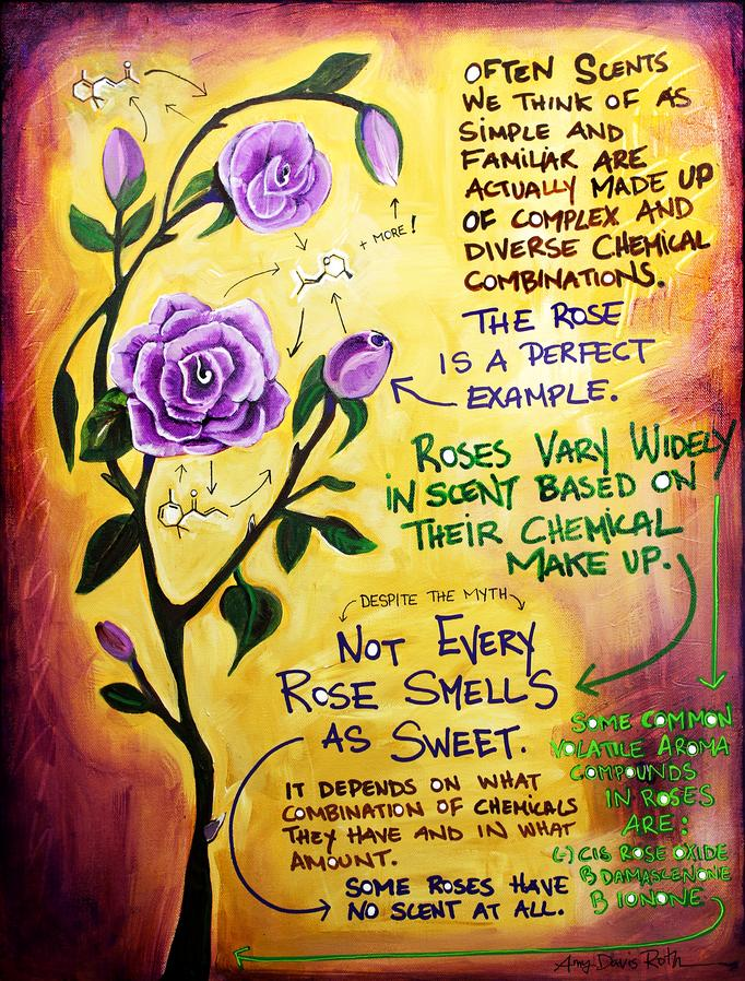 rose chemistry